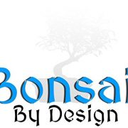 Bonsai-Elm-parvifolia-S-Style-7-yr-1-tree-0-1