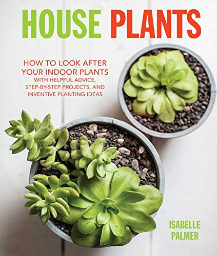 House-Plants-How-to-look-after-your-indoor-plants-with-helpful-advice-step-by-step-projects-and-inventive-planting-ideas-0