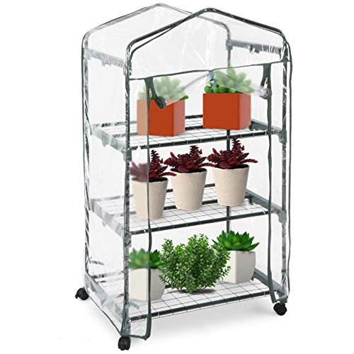 Jago-Compact-Walk-in-Greenhouse-Garden-Terrace-Balcony-Plants-PVC-Growhouse-0