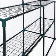 Poly-Greenhouses-Greenhouse-Various-Models-0-1