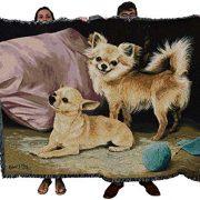 Chihuahua-Throwover-0-1