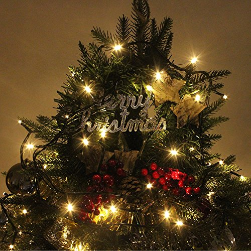White String Christmas Lights.Rpgt 100 1000 Led 31v Safe Voltage Green Cable Warm White String Fairy Lights With 8 Light Effects Ideal For Christmas Trees Xmas Party Wedding